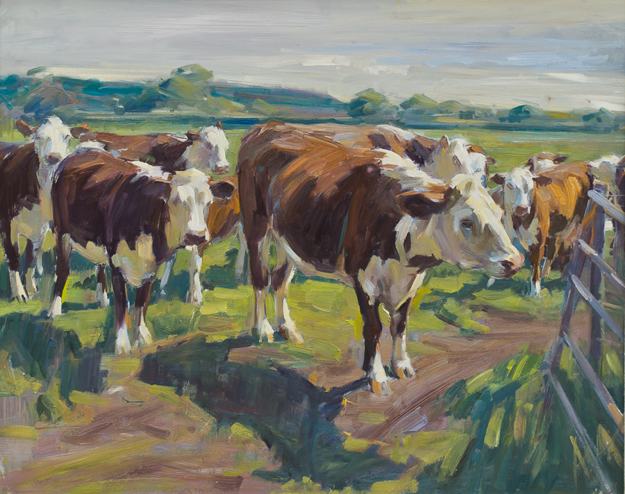 The Herefords
