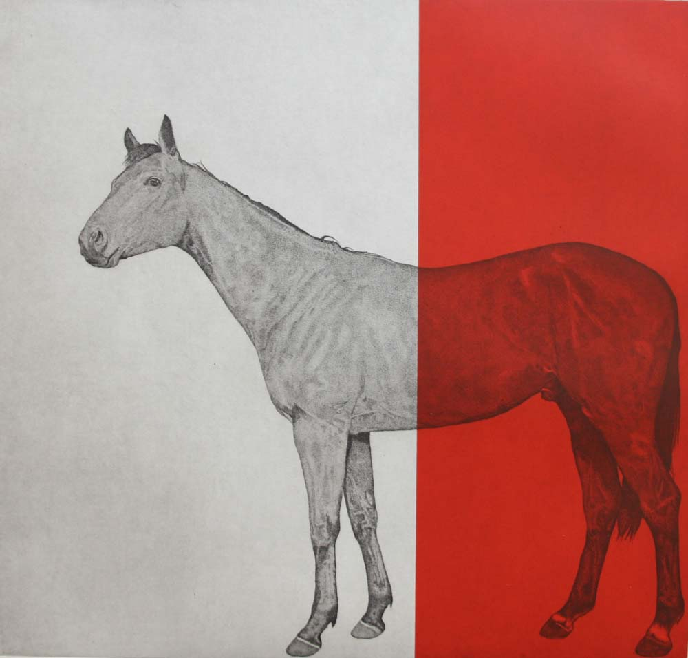 Horse Study in Red